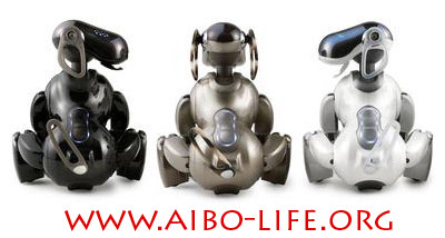 AIBO 7 at ABO-Life.org